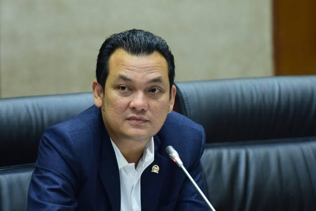 Wakil Ketua Komisi VI DPR Martin Manurung. (Foto: DPR)